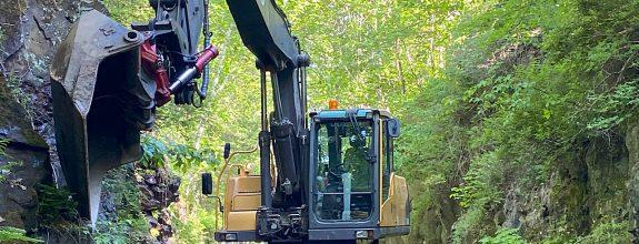 Windham Rail Trail – Rainforest Section